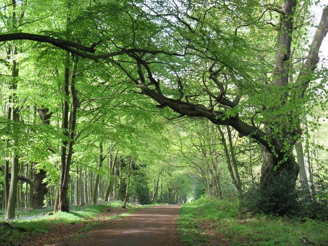 Bracknell-Forest-Highways-Contract2.jpg