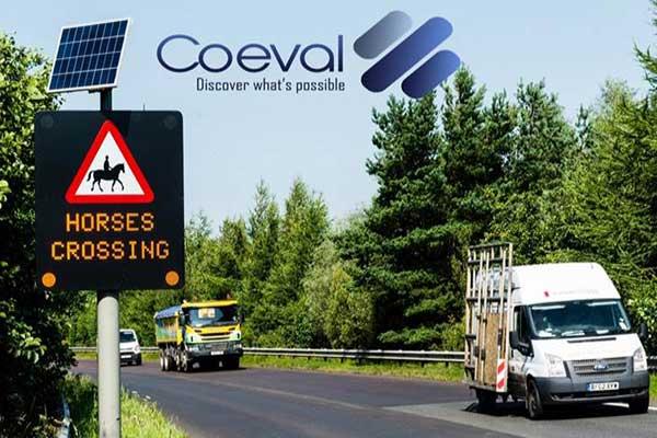 Coeval-horse-crossing