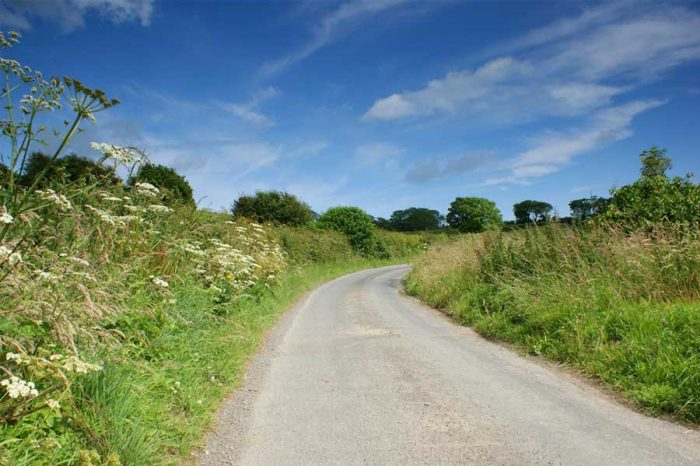 Drivers urged to take care on country roads