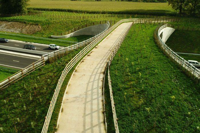 A556 'green bridge' is winter wonderland