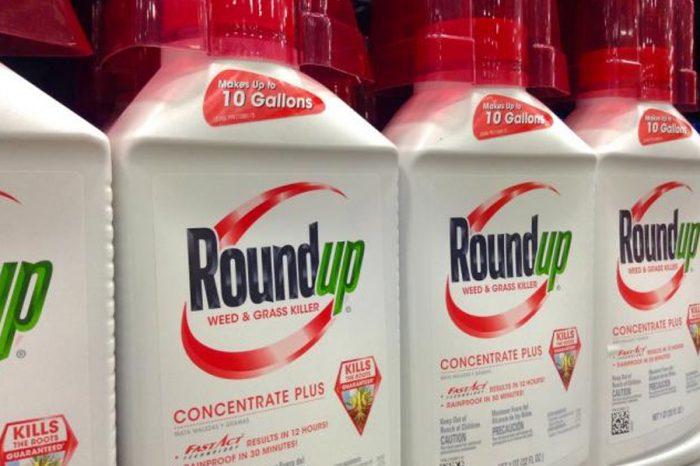 Highways boss defends use of herbicide in Swindon - calls criticism 'scaremongering'