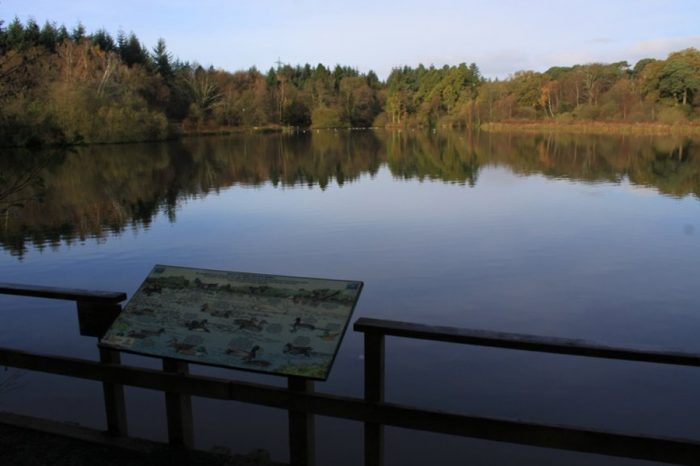 SWH secures £2.1m ecological project from Highways England for Stover Country Park in Devon