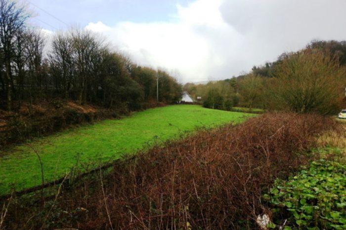 Cutting edge bio-tech system to clean A38 water run-off in Devon