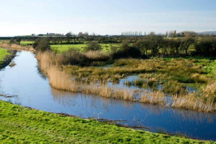 Wales scraps £1.4bn Gwent Levels M4 relief road scheme