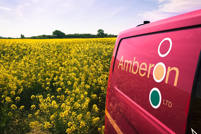 The Amberon Group | 2019: The year in review