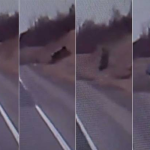 Video| SUV flips five times yet all four passengers survive